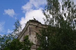 Чернецово останки Храма