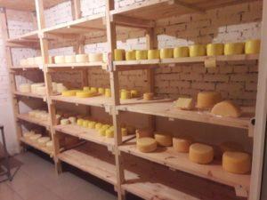 Невельская сыроварня