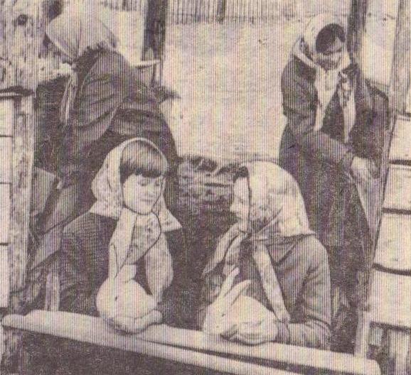 Кролики Ловец_1972