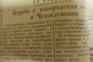 Стройка 1950